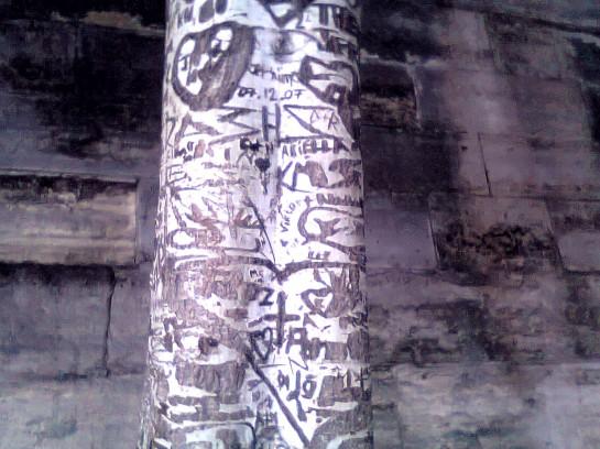 Foto0151- albero
