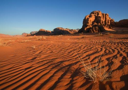 Tweet R8/8 - Il deserto